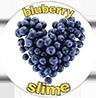 slime.lv Logo